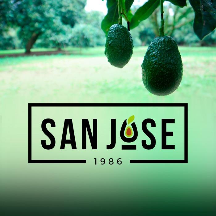 SAN JOSÉ 1986